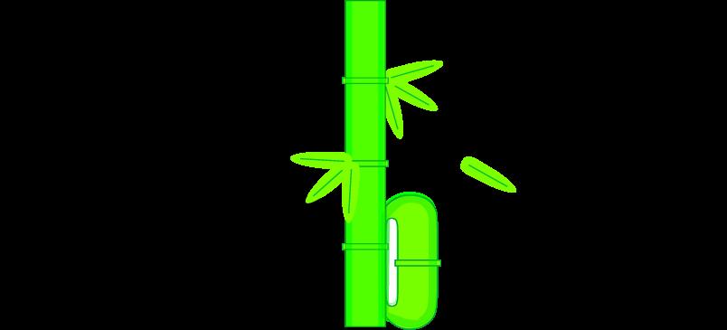 Bambuno
